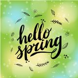 Hello Spring. Hand drawn calligraphy and brush pen lettering. design for holiday greeting and seasonal spring holiday Royalty Free Stock Image