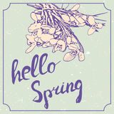 Hello spring hand drawn lettering with snowdrop flowers. Vintage grunge marriage design template, floral artwork. Vector Royalty Free Stock Images