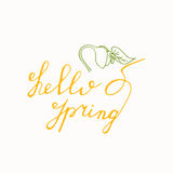 Hello Spring hand drawn lettering with sprout icon. Vector greeting card Stock Photos