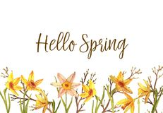 Hello Spring. Hand-drawn watercolor spring flowers isolated on the white background. Greeting card template, spring illustration. Hello Spring Royalty Free Stock Image