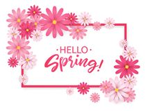 Hello Spring.Hand lettering with pink flowers frame.Paper chamomile on white background. Vector illustration. Hello Spring.Hand lettering with pink flowers Royalty Free Stock Photography