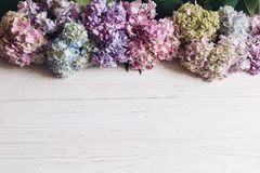 Hello spring. Happy mothers day. Women day. Beautiful hydrangea flowers on rustic white wood, flat lay. Colorful pink,blue,green,. White border of hydrangea royalty free stock images