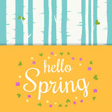 Hello spring lettering with flat flowers and leafs. Spring birch forest background. Stock Image
