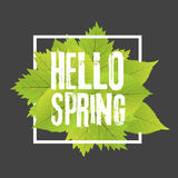 Hello spring. Lettering with hand drawn letters. Label and banner template with green leaves with frame  illustration. Black background Stock Photography