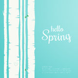 Hello spring lettering. Spring birch forest background. Royalty Free Stock Images