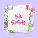 Hello spring lettering. Spring flowers on white paper background with seasonal spring text. Vector illustration. Stock Photography