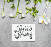 Hello spring lettering with various springtime plant: Lily of Valley, crocus flowers and spring twigs Stock Images