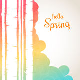 Hello spring lettering on a waves background. Spring birch forest background. Stock Image