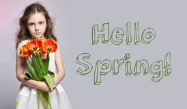Hello Spring, 8 march. Fashion red-haired girl with tulips in hands. Studio photo on light coloured background. Spring day royalty free stock photos