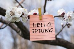 Hello spring in memo. Pined on tree with blooms Royalty Free Stock Photography