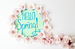 Hello spring note with cherry blossom flowers. Hello spring calligraphy note with cherry blossom flowers royalty free stock images