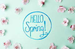 Hello spring note with cherry blossom flowers. Hello spring calligraphy note with cherry blossom flowers royalty free stock photo