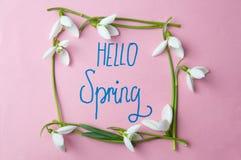 Hello spring note with fresh snowdrops. Hello spring calligraphy note with fresh snowdrops royalty free stock photos