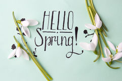 Hello spring note with fresh snowdrops. Hello spring calligraphy note with fresh snowdrops stock images