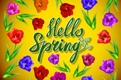 Hello Spring Poster Design in Realistic Colorful Vector Flowers Background with Vines for Spring Season. Vector Illustration Stock Photography