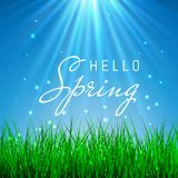 Hello Spring Poster With green grass and blue sky, Vector Illustration.  Royalty Free Stock Image