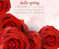 Hello spring red roses Vector. Romantic passional greeting card templates. Hello spring red roses Vector. Romantic passional greeting card template Royalty Free Stock Images