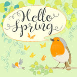 Hello spring with robin. Cartoon bird. Hand letter. Vector illustration Royalty Free Stock Photo