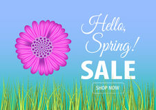 Hello spring sale banner. Vector illustration for your design EPS10 Stock Photography