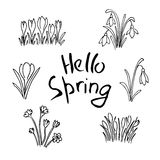 Hello Spring sketch set. First flowers and Lettering. Hello Spring sketch set. Flowers and Lettering. Cute lilac flowers, snowdrops, crocus, tulips, sketch. Hand Royalty Free Stock Photo