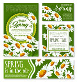 Hello Spring, springtime holiday banner template. Hello Spring and springtime holiday banner template. White flowers of daisy and chamomile on green meadow for Royalty Free Stock Photography