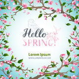 Hello spring template. Royalty Free Stock Photo
