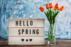 Hello Spring Text on Blue Background Royalty Free Stock Photos