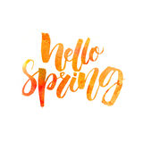 Hello spring text. Handwritten brush lettering with watercolor texture isolated on white background Royalty Free Stock Photo