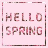 Hello Spring text on pastel pink background vector illustration