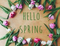 Hello spring text sign on beautiful double peony tulips frame flat lay on wooden table. Springtime. Stylish floral greeting card. royalty free stock photos