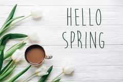 Hello spring text sign on tulips and coffee on white wooden rust royalty free stock photography