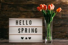 Hello Spring Text on Wooden Background Stock Images