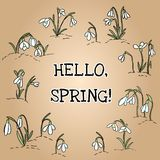 Hello spring text in wreath of snowdrops ornament. Beginning of spring vector illustration