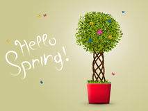 Hello spring with tree in a pot Royalty Free Stock Image