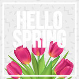 Hello Spring! Typographic spring poster with tulips bouquet. Typographic spring poster with tulips Stock Photos