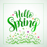 Hello spring typography vector banner design in green color Royalty Free Stock Photo