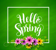 Hello spring vector banner design in green textured background. With realistic colorful flowers, vines and leaves and a boarder. Vector illustration Stock Photography