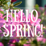 Hello spring vector blurred design Stock Images