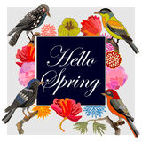 Hello Spring. Vintage card with fantasy birds and flowers. Royalty Free Stock Photo