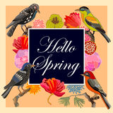 Hello Spring. Vintage card with fantasy birds and flowers. Retro design and  Victorian art motifs template Royalty Free Stock Photos