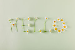 Hello spring. Stock Images