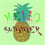 Hello summer. Ananas illustration cute funny Stock Photos
