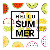 Hello summer background with fruits. Vector , illustration Royalty Free Stock Photography