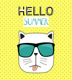 Hello Summer Background with Funny Hand Drawn Cat. Vector Illust Stock Image