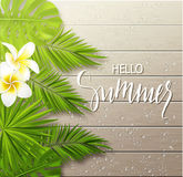 Hello summer background with tropical flowers, plants, leaves and drops on wooden board . Vector illustration. Hello summer background with tropical flowers Royalty Free Stock Photography