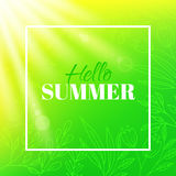 Hello summer. Banner with frame and typographic design. Bright background with leaves, flowers and sun Royalty Free Stock Photos