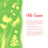 Hello summer banner template. Promotional banner with tropical palm trees   Stock Photo