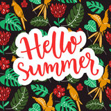 Hello summer banner with typography at tropical background. Tropical birds, leaves and flowers. Stock Photos