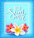 Hello summer. Calligraphic inscription. Summer Tropical Design Concept. Typography Lettering. Vector illustration EPS10 Stock Photos