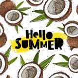 Hello summer. Coconut paradise Royalty Free Stock Photo